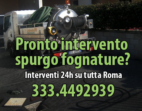 Spurgo roma